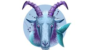 Capricorn Zodiac Sign and Capricorn Rising Star: Ultra responsible and very controlled.