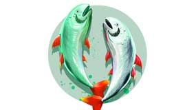 Pisces Zodiac Sign and Capricorn Rising Star: Very creative and sensitive character, but tenacious, hardworking.