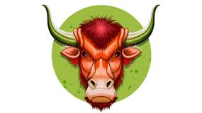 Taurus  Zodiac Sign and Capricorn Rising Star: Pragmatism and realism, consistency and reliability.